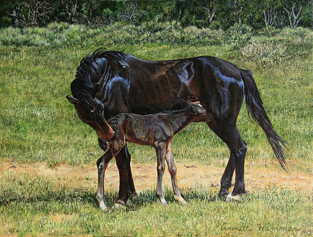 Mustang Momma