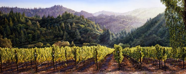 Mayacamas Twilight