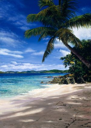 Salomon Beach - Commissioned Painting