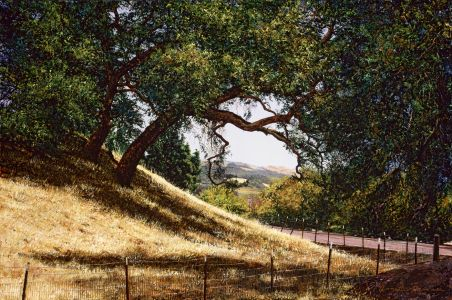 Sonoma Afternoon - Public Collection - San Dimas, CA