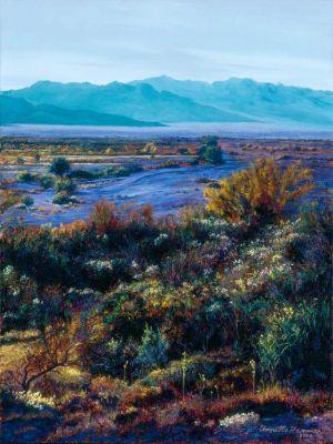 Ash Meadow Twilight