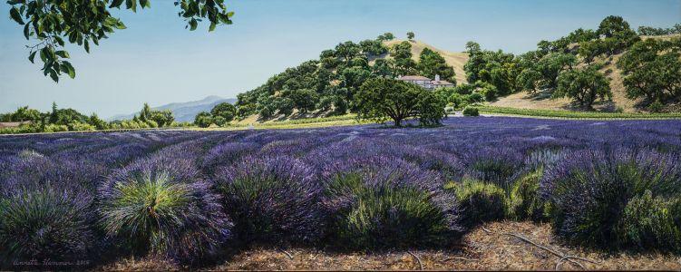 American Provence